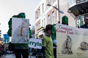 Galway, parade de la St-Patrick, protection des animaux