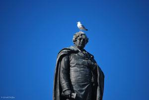 Statue de Daniel O'Connell à Dublin. Sa tête est aimée par les pigeons et mouettes
