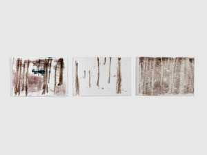 Wald, dreiteilig, 2012, series of 3 monotypes, 21 x 30 cm, on paper on wood