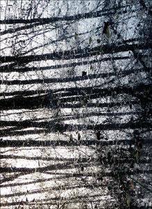 Reflet d'arbre 4