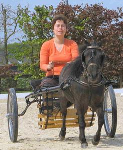 Isabelle Ruffet et Dapper - Formation aux Pays-Bas en mai 2008