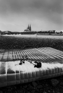 Mattress, rose, cathedral (Cologne, Germany. 2009)