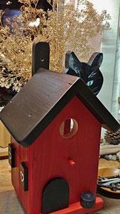 Houten Nestkastje, Nestkastje  met Kat, Details, Vogelhuisje bouwen ,  vogelhuisje met kat_10