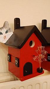 Houten Nestkastje, Nestkastje  met Kat, Details, Vogelhuisje bouwen ,  vogelhuisje met kat_18