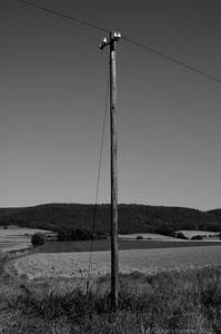 Telegrafenmast an der ehem. VEV Bahnlinie. Im Hintergrund der Ith. Da die VEV mittlerweile Geschichte ist, passt S/W perfekt.