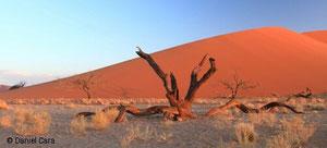 Namibia Namib