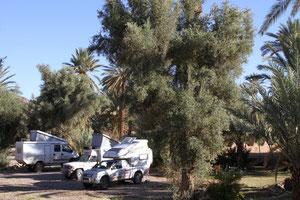 Camping Kasbah Palmeraie in Agdz