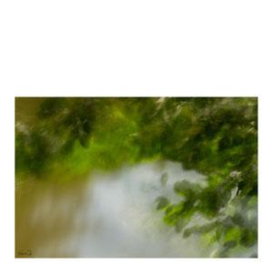 Spätnachmittag am Teich