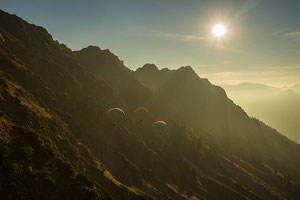Vogelfrei Nebelhorn
