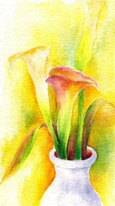 Warm Callas  8 x 12  watercolor $165