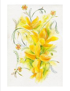 "Forsythia  watercolor  8"" x 12""  $110"