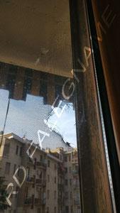 Zanzariera di una Porta-Finestra con il Telo squarciato