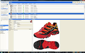 Equipo: datos de las zapatillas