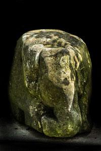 Evas Elefant