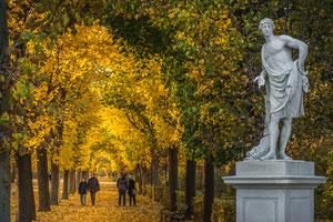 Schloßpark von Schönbrunn
