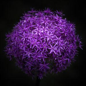 Naturball