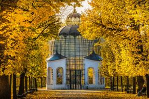 Im Schlosspark von Schönbrunn