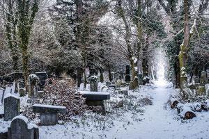 Winter im Friedhof