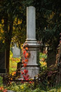 Im Zentralfriedhof