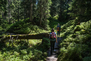 Wandertag in Rauris