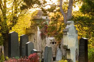 Jüdischer Teil des Wiener Zentralfriedhof`s