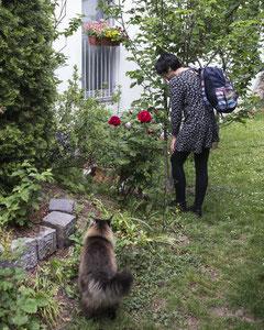Eva & die Katzen