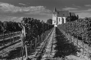 Kirche im Weinngarten