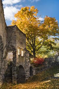 Herbsteinzug