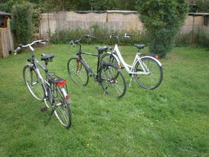 Garten und Fahrräder