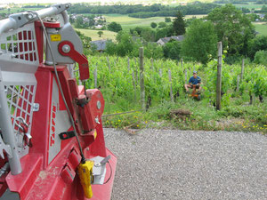 Travail du sol avec charrue tirée au treuil dans vignes étroites