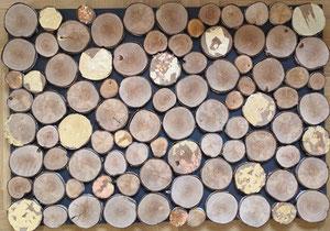120 x 80 cm, Holzcollage, Blattmetalle