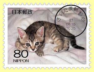 Junの切手