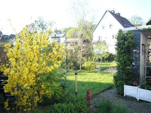 Mein linker Garten von unten gesehen