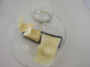 poesie im innersten, kleine klappbox mit text