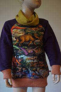Voor: Sweater Dino's, maat 110/116