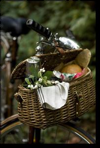 Fingy's basket