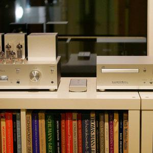 Musikanlagen mit klassischer Röhrentechnik sowie die Schallplatte sind gemeinsam oft ein Dream-Team!