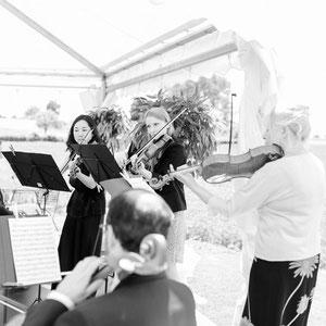 Streichquartett für Hochzeiten