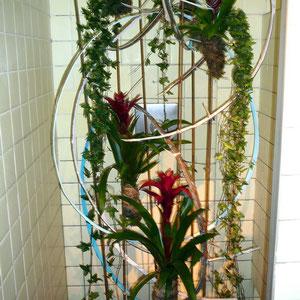 Orchideen in der Duschkabine