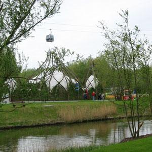 Weidendom (Totale)