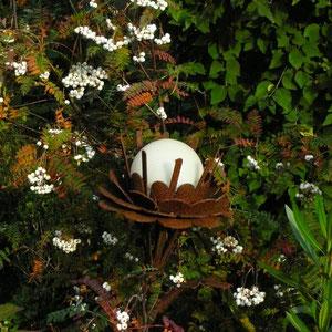 Solar-Blüte und Sorbus