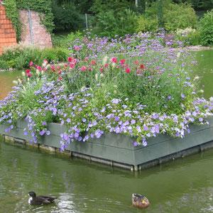 Schwimmende Blumeninsel