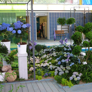 Blumenschau im Hallenbad
