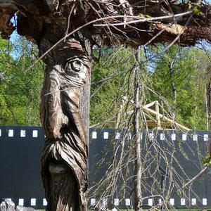Baumbart im Filmgarten (Herr der Ringe)