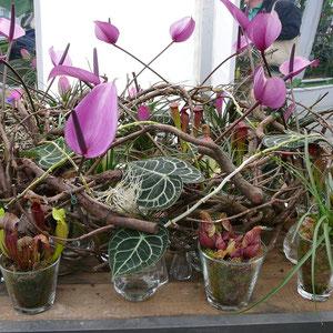 Dekorationsbeispiele in der Blumenhalle