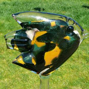 Glasfisch im Blütensee