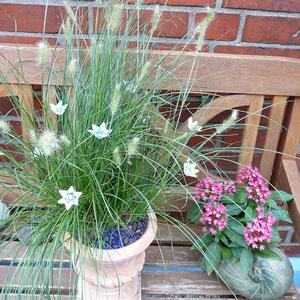 Keramik-Blüten