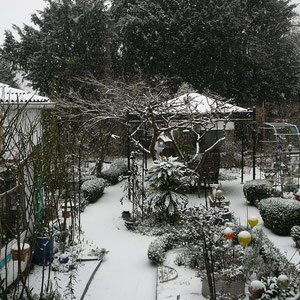 Kurzes Schneegestöber