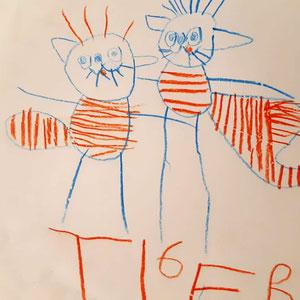 v-naumann-Winter-Tiger