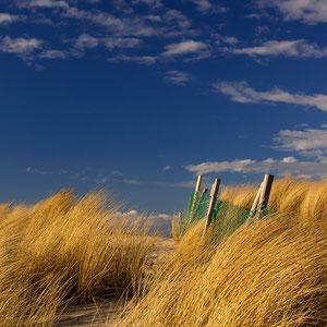 In den Dünen am Strand